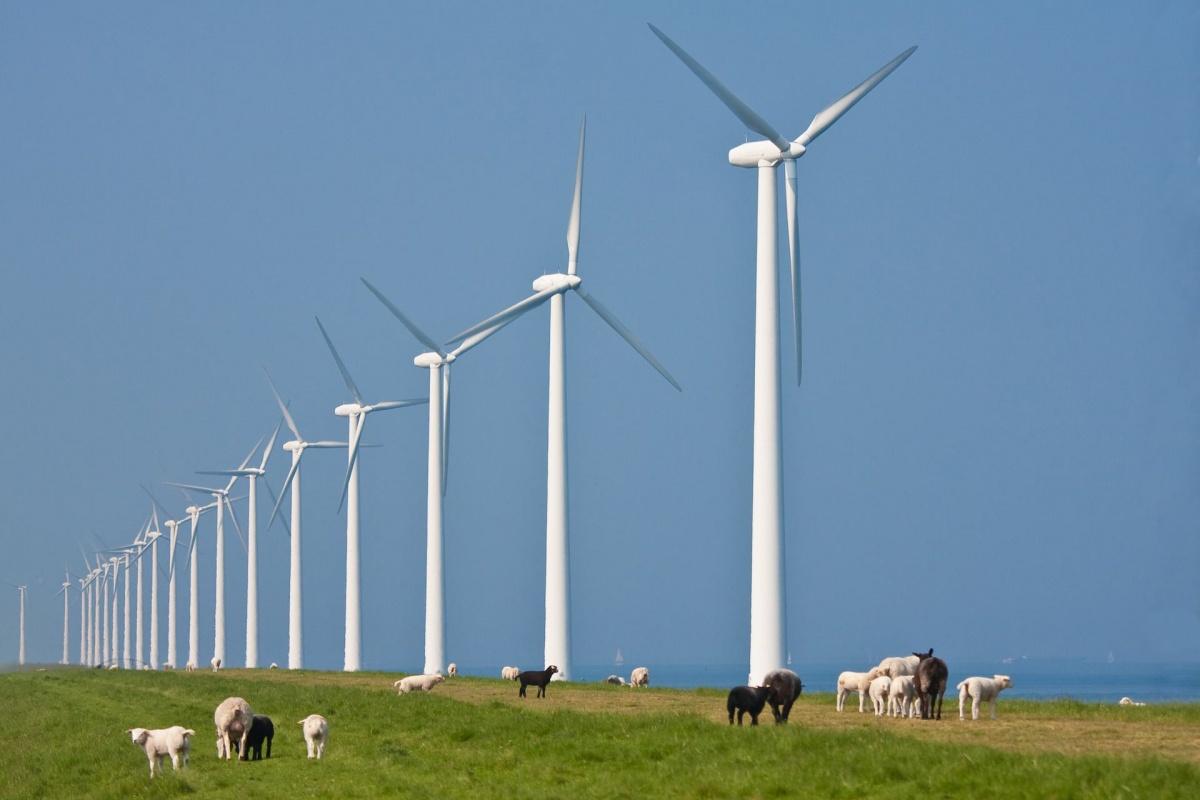 Almeerse Wind genereert voldoende investeerders