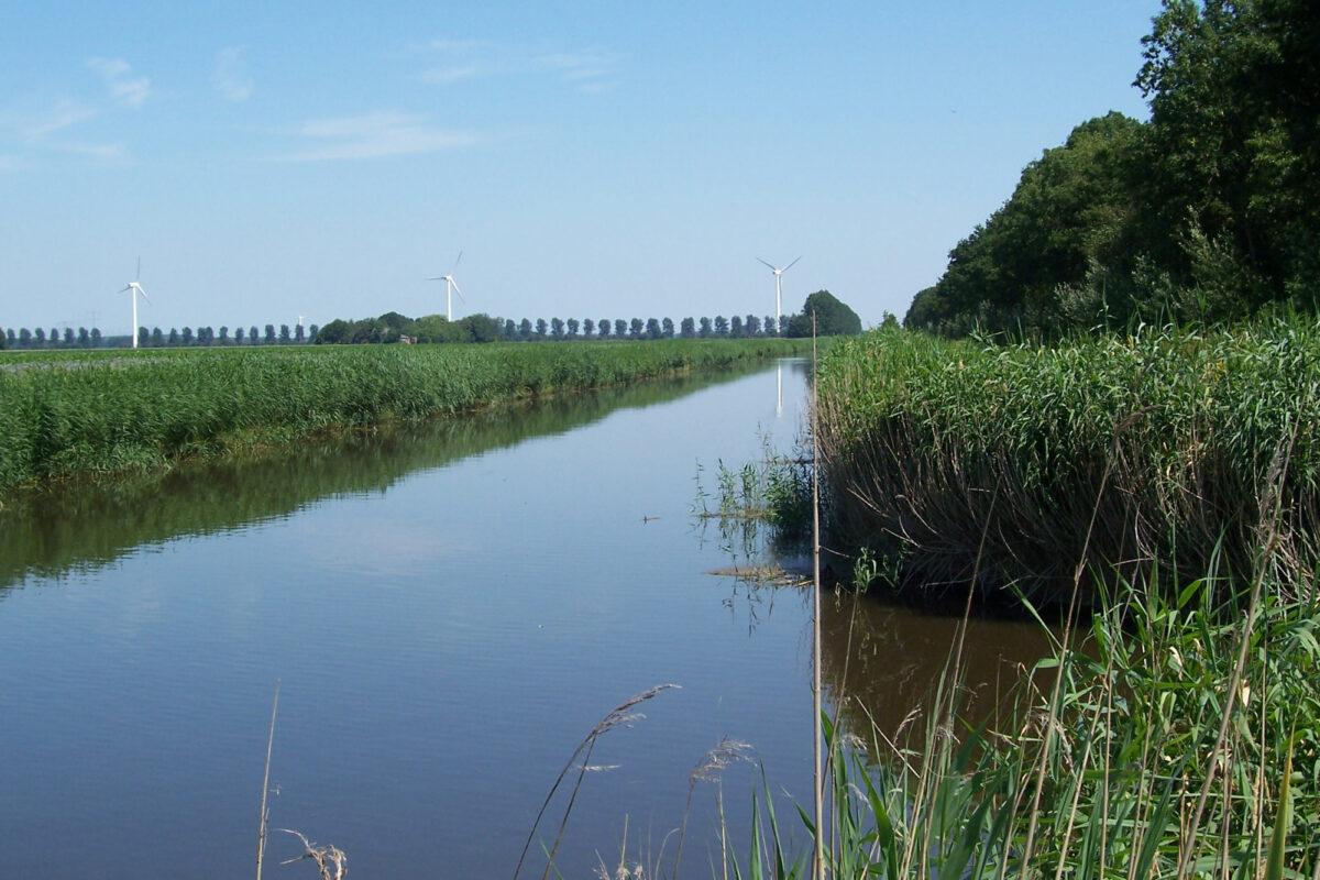 Voortgangstikstofaanpak in Flevoland